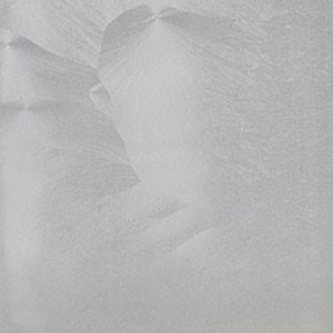 Lacado Plata 3D P. Romero